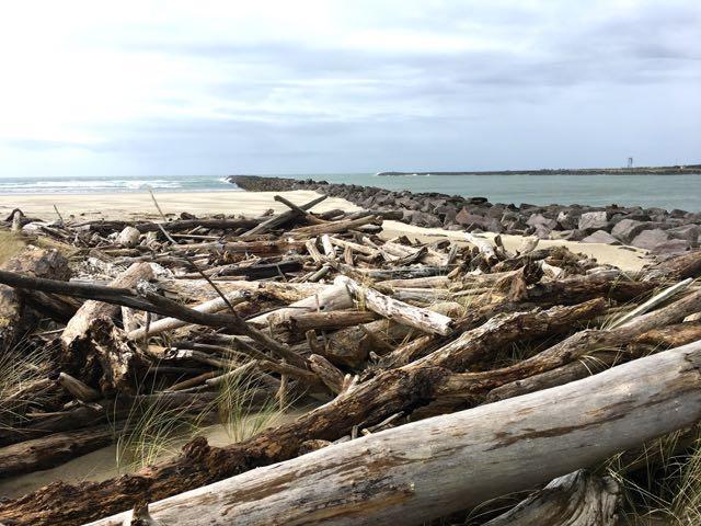 Mile 289 - Kincheloe Point, South Jetty Tillamook River