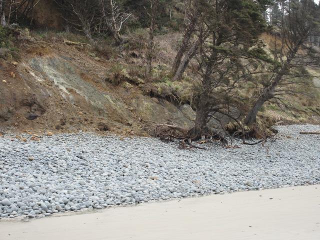 LANDSLIDE ON COVE BEACH