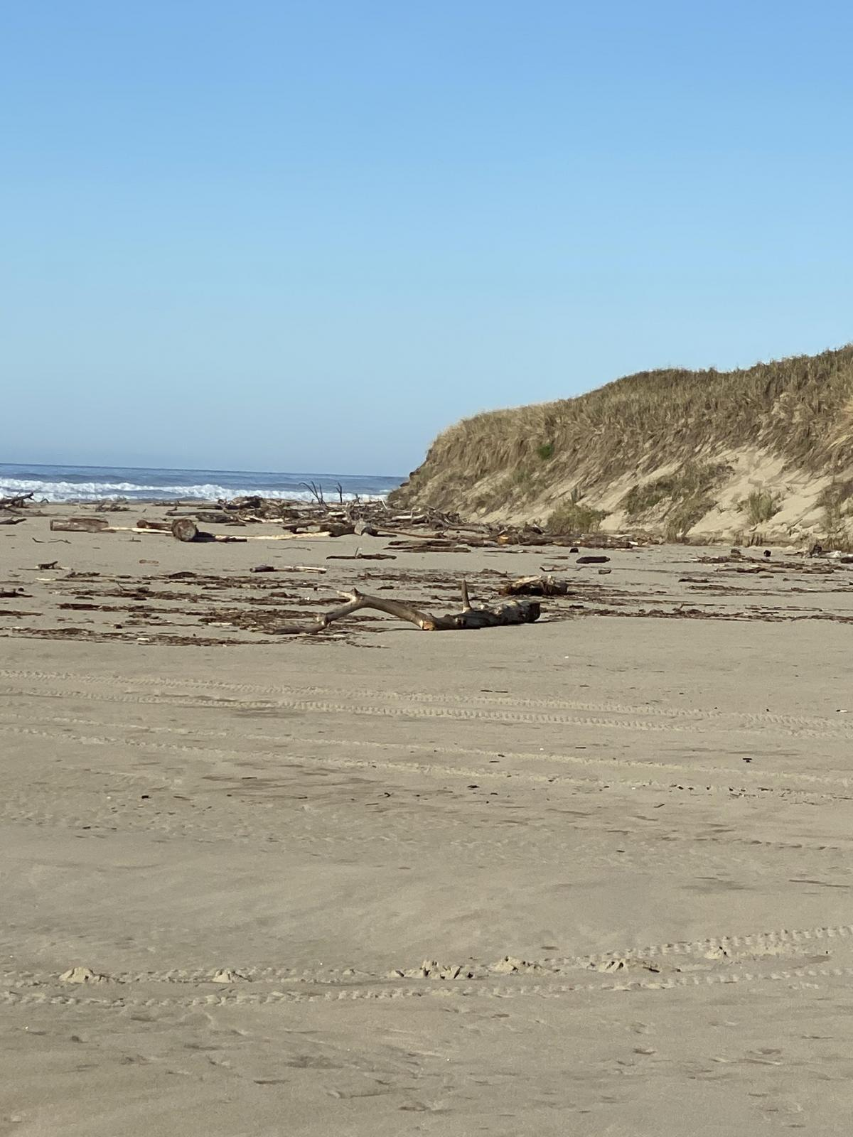 Large bluff along mile 147 200 yards before the jetty.