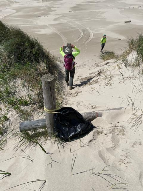 Picture showing location of the trash bag that was filled.  Near the jetty where the ATV's used to cross the foredune.