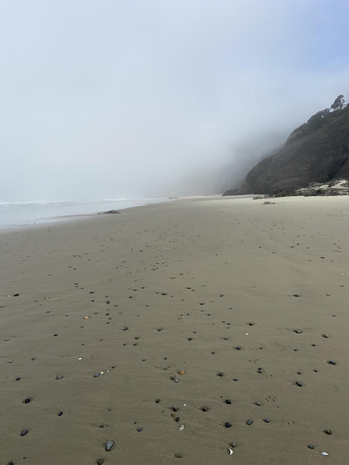 A foggy day on Ocean Beach