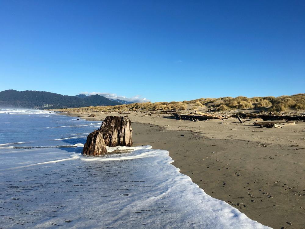 High tide on the Nehalem spit. Photo by Steve Morey.