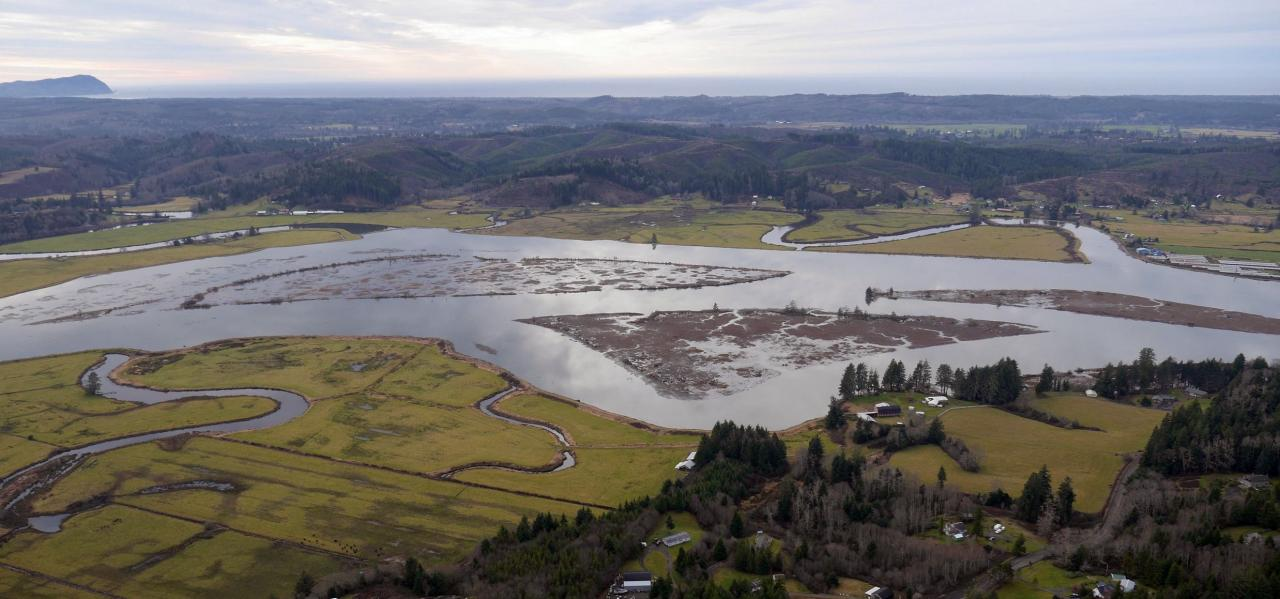 King Tide fills Youngs Bay wetlands. Photo by John Bauer.