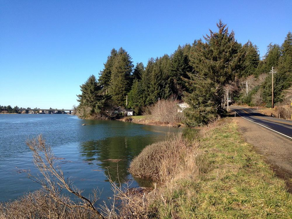 A king tide washes the bank of the Siletz River.\Photo by Meg Reed.