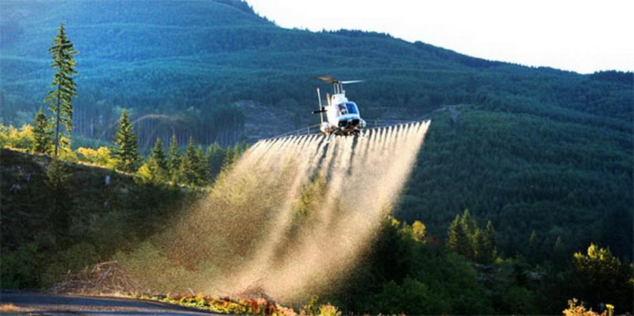 Forest herbicide spraying by helicopter.\Photo courtesy of Washington DNR.