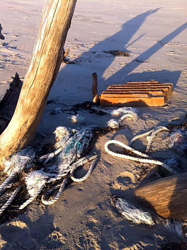 Marine debris on Netarts spit. Photo by Allison Asbjornsen.