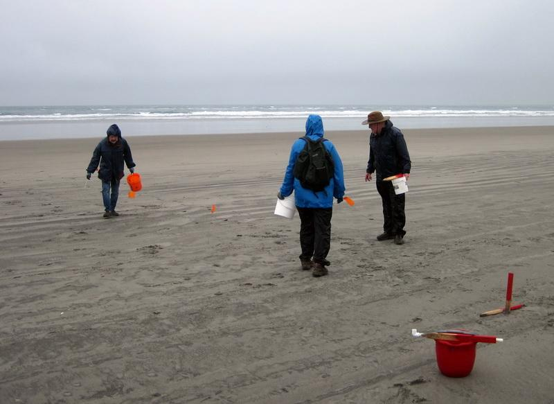 Volunteers at an early Fort Stevens marine debris survey.\Photo by Ed Joyce.