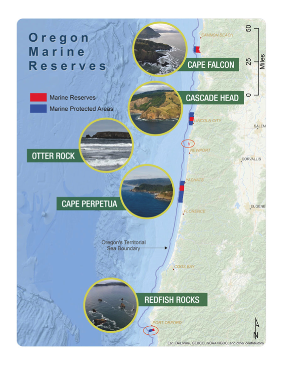 Oregon marine reserves overview.