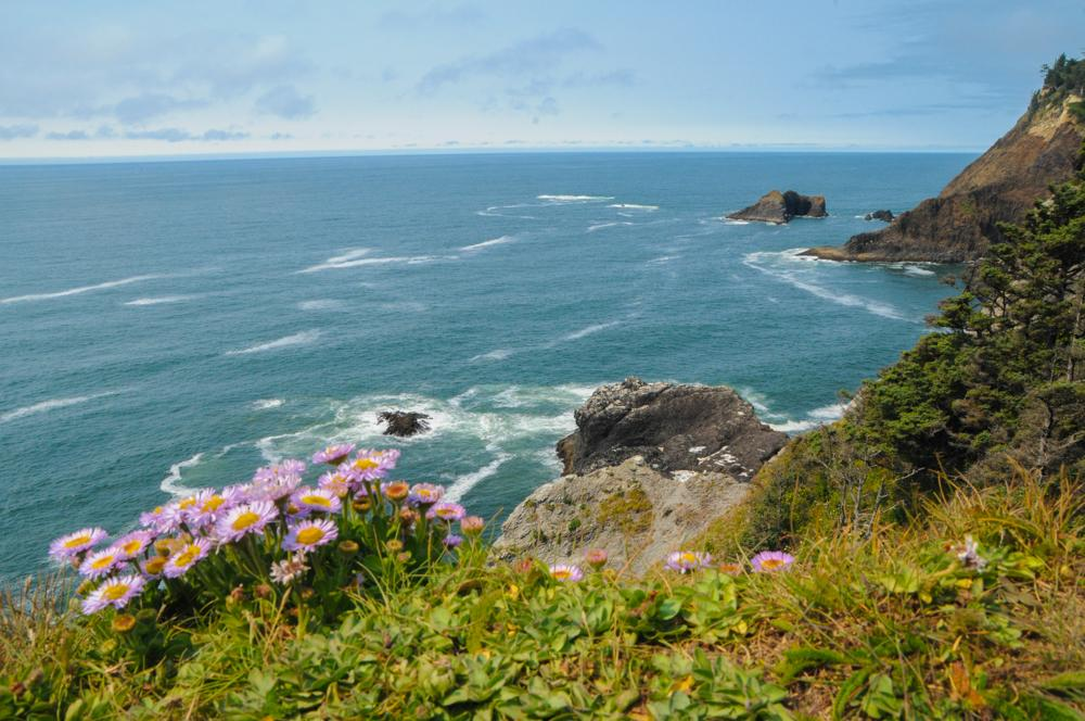 Cape Falcon Marine Reserve.\Photo by Tiffany Boothe.