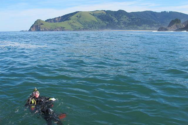 Research diver in Cascade Head Marine Reserve.  Photo courtesy of ODFW.