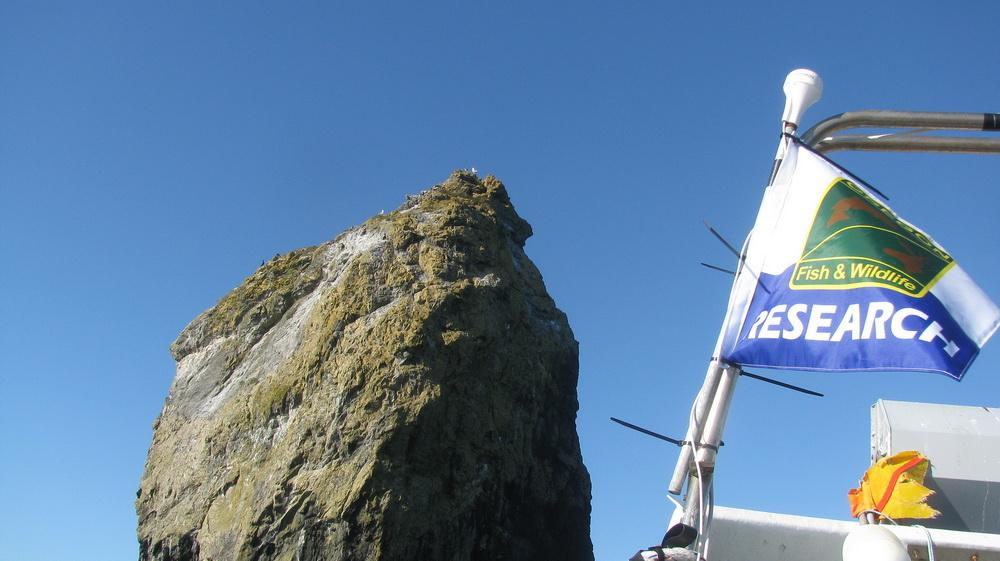 ODFW waves the flag for marine reserves research.\Photo courtesy of ODFW.