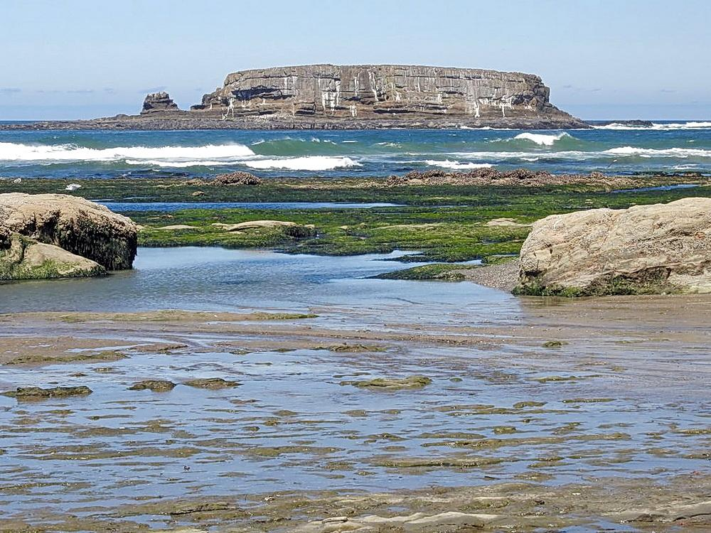 View of Otter Rock, near the condo offered for rent.  Photo by Cathy Tronquel.