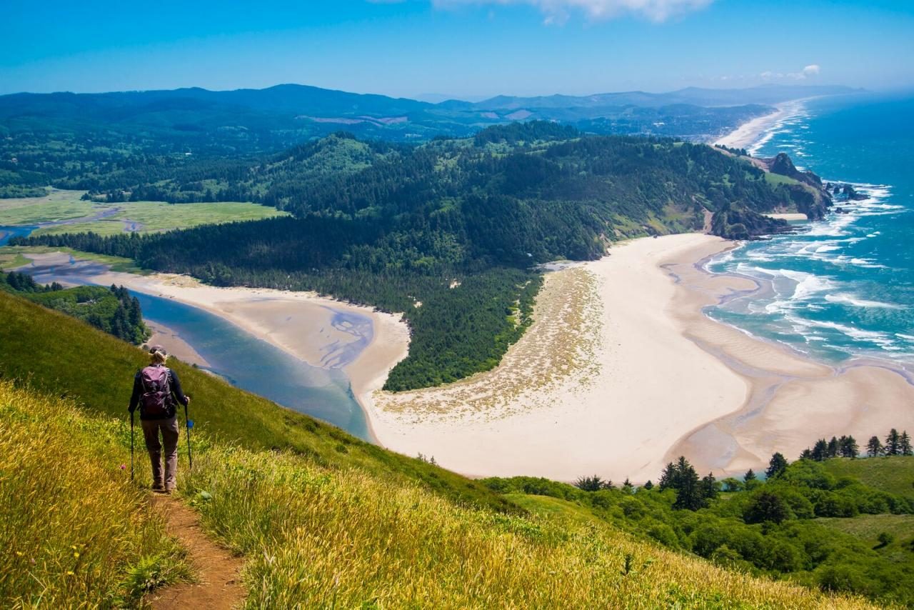 Cascade Head trail. | Photo by Dennis White