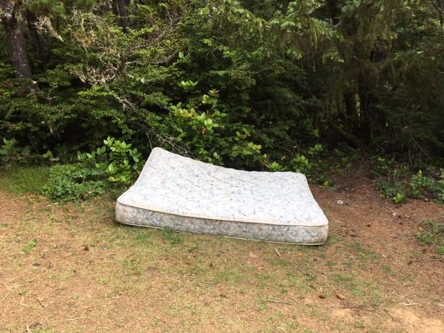 Mattress dumped beside Whaleshead-Indian Sands trail.