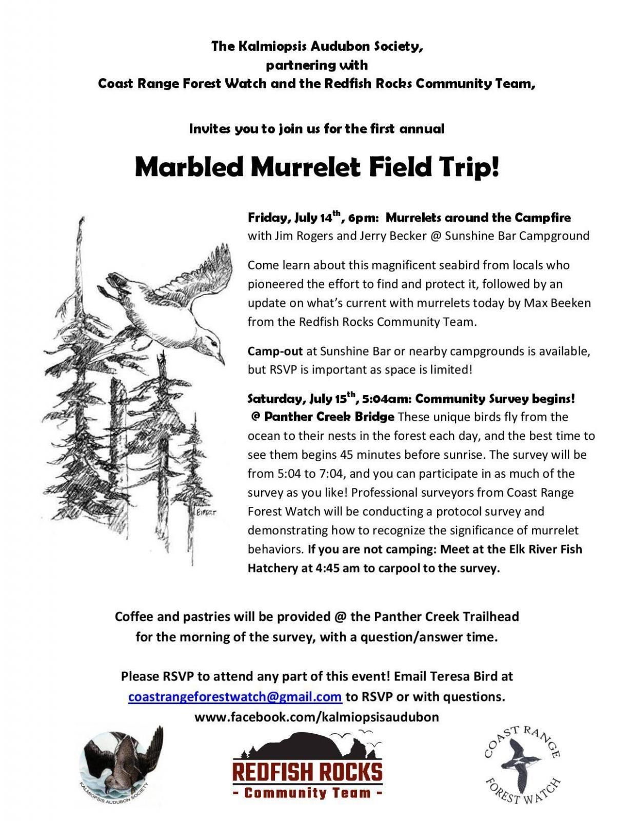 Marbled murrelet field trip flyer.