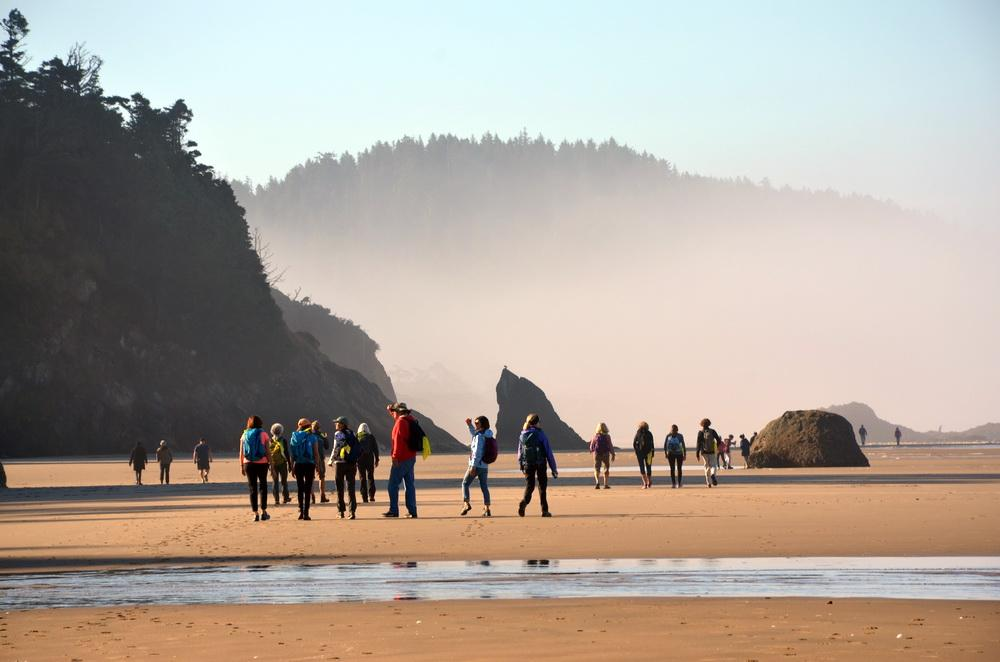 Walkers taking part in the 2017 version of CoastWatch Oregon.