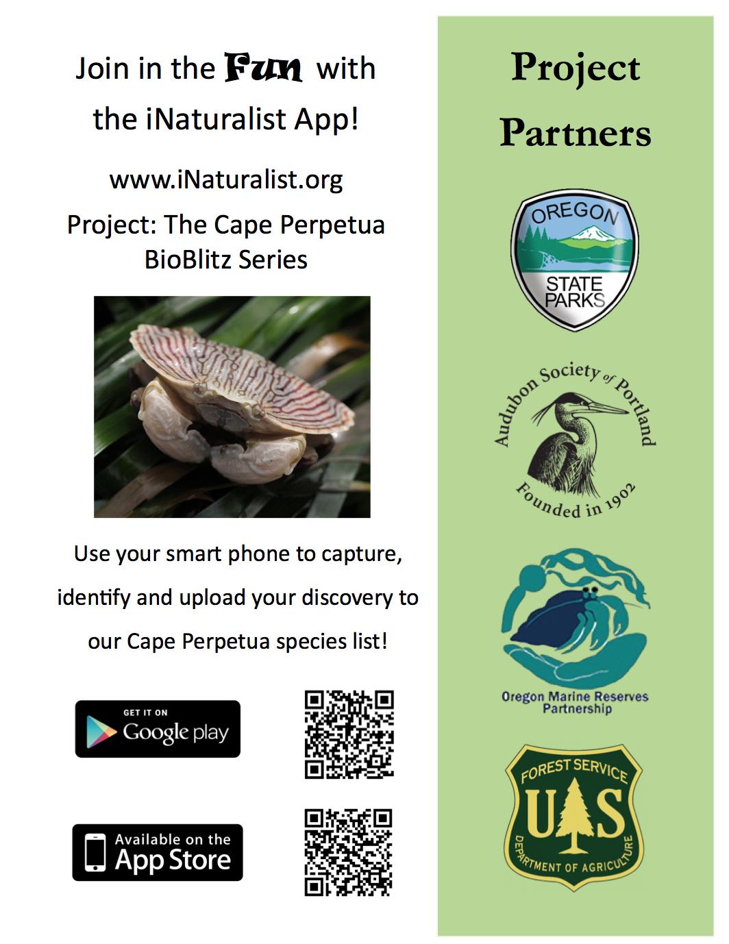 Image of the 50th Anniversary BioBlitz iNaturalist App description.