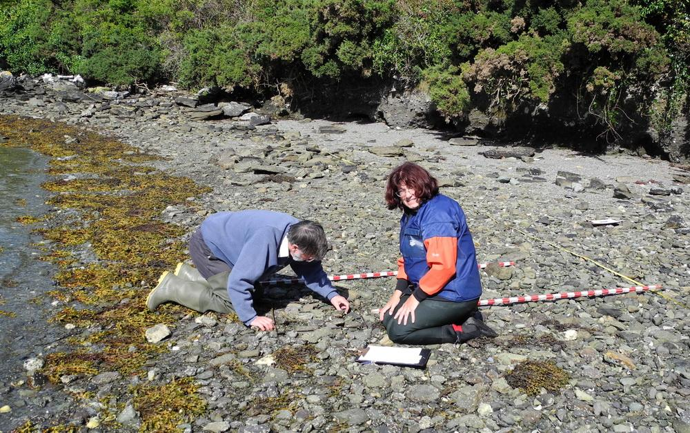 Cynthia Trowbridge (right) conducting research at Lough Hyne, Ireland.