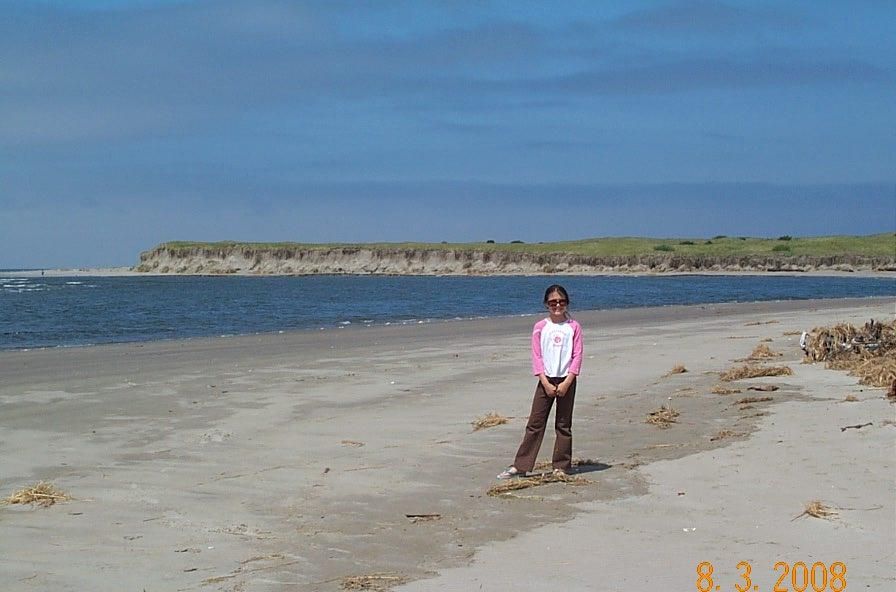 Usually, all the water area in the background has been sandy beach