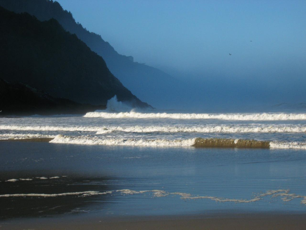 fog bank off shore on a sunny calm day