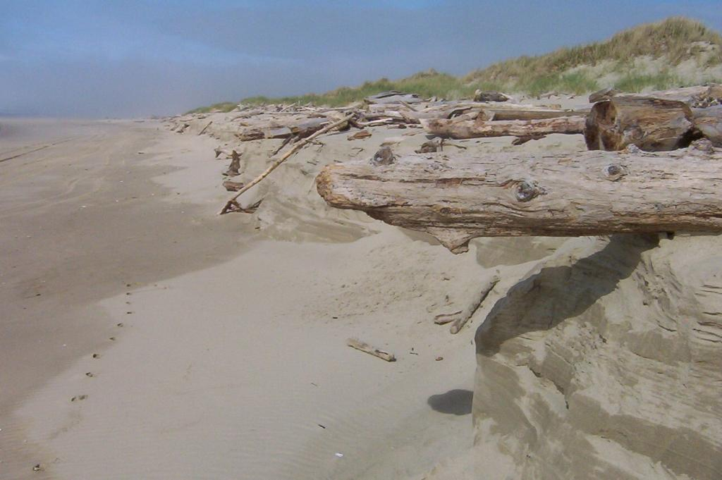 View of beach near mile 149