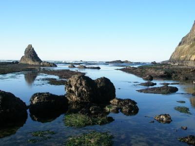 Northern end of mile 225 by Cape Foulweather