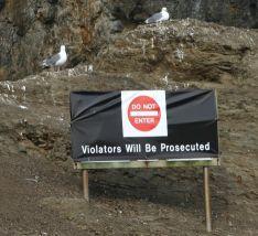 plastic sign attached to old /original Refuge sign.