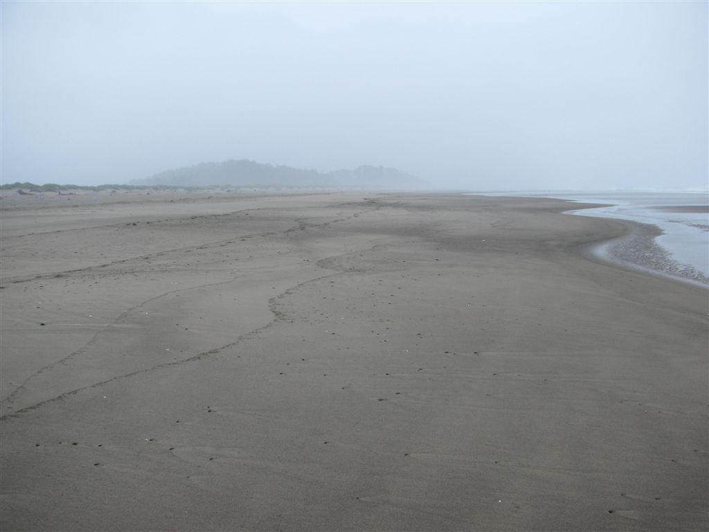 The beach, dune area, and hills in the background, all part of mile 288.