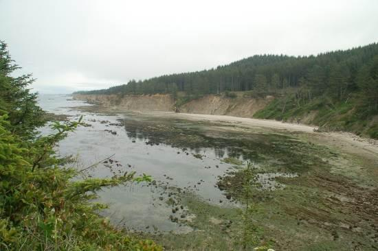 Cape Arago, North Cove from the cliffs on the way to the viewing area above the southern headland of the North Cove.