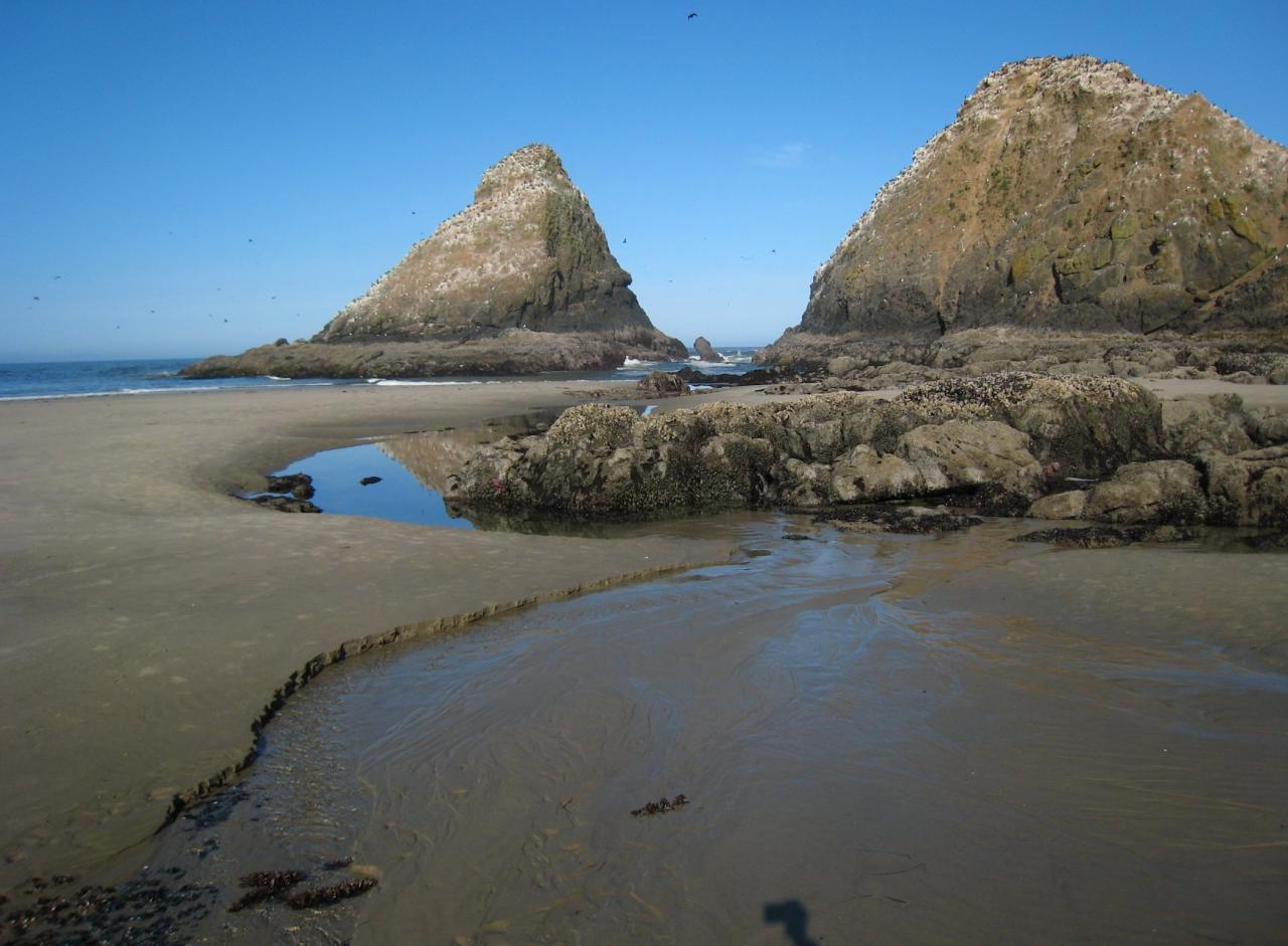 Low tide looking out to the rocks off Heceta Head.