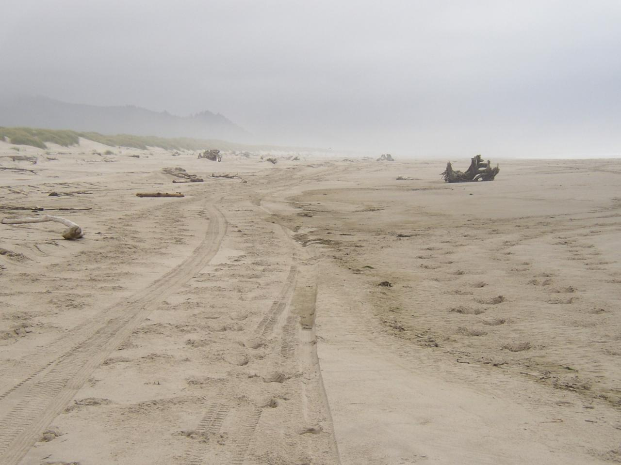The ATV must have driven on the beach on the 12th or the day before.  The track extended from near the access path at the south end of Nehalem Bay State Park through Mile 297.