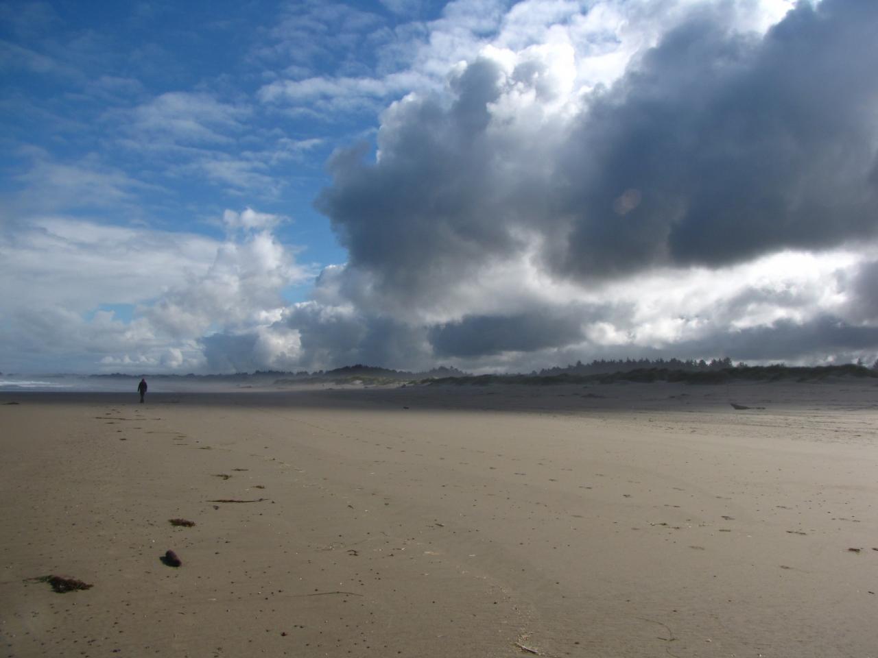 Beautiful day on the beach.