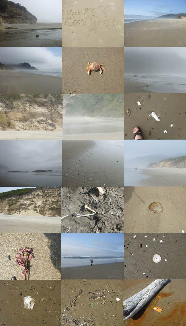A glimpse of the shoreline.