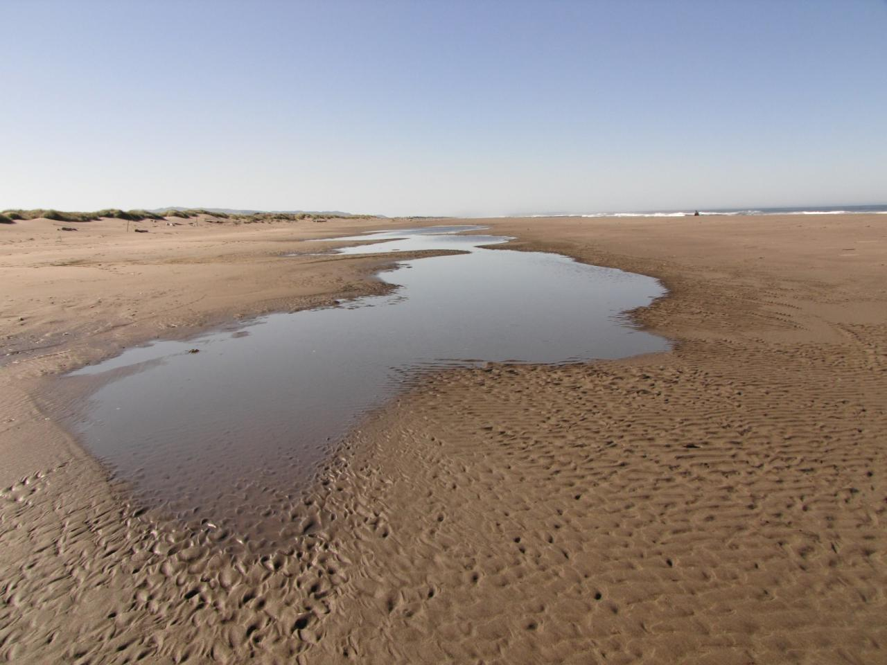 As is common during this time of the year, there are large runnels forming behind the sand that is being pushed on shore to form a ridge.  This runnel was at the northern part of the mile.