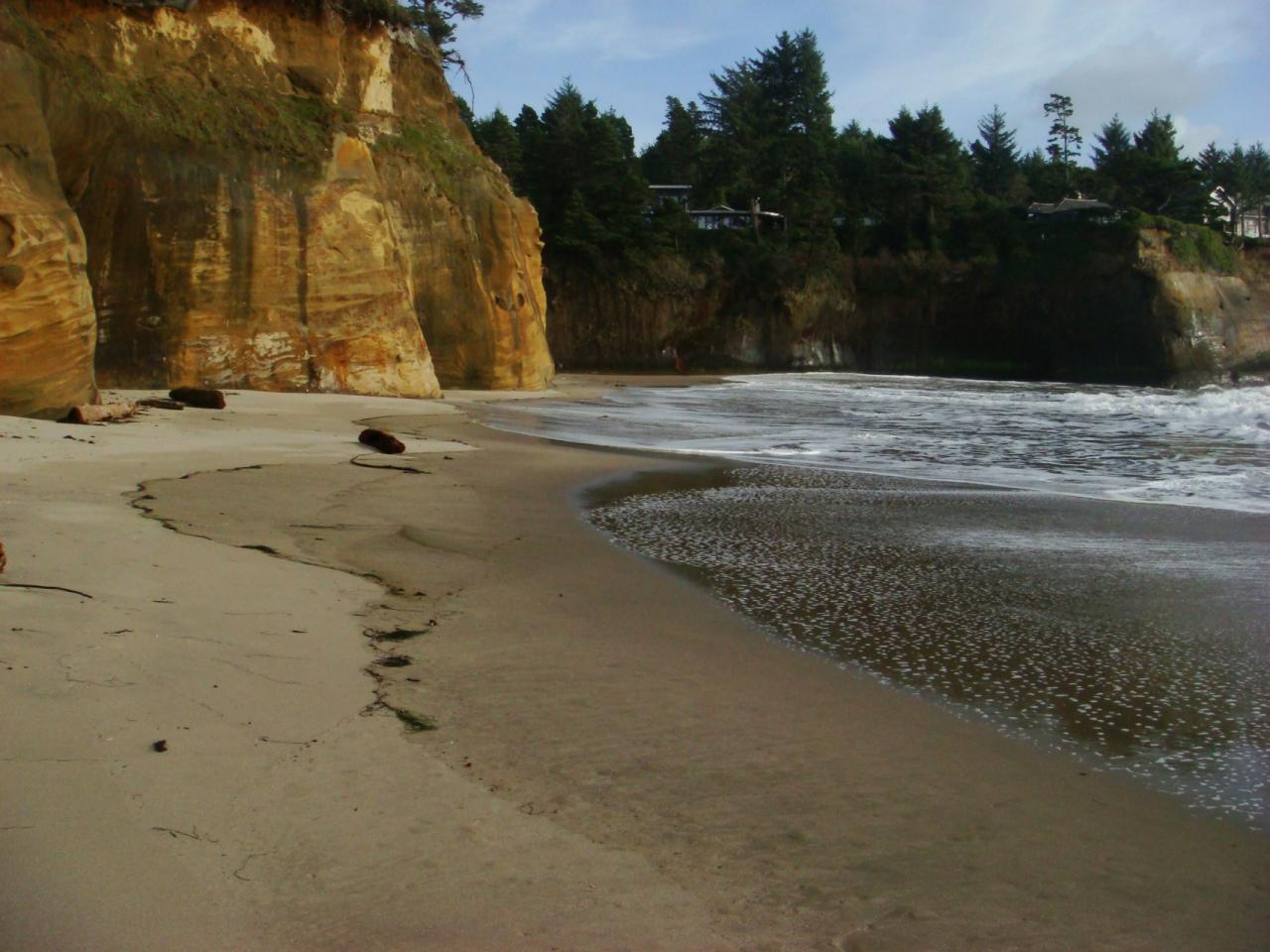 View looking east along north beach of Big Whale Cove