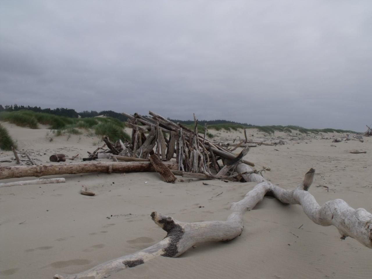 Someone built a unique fort-like structure out of beautiful driftwood on the beach.