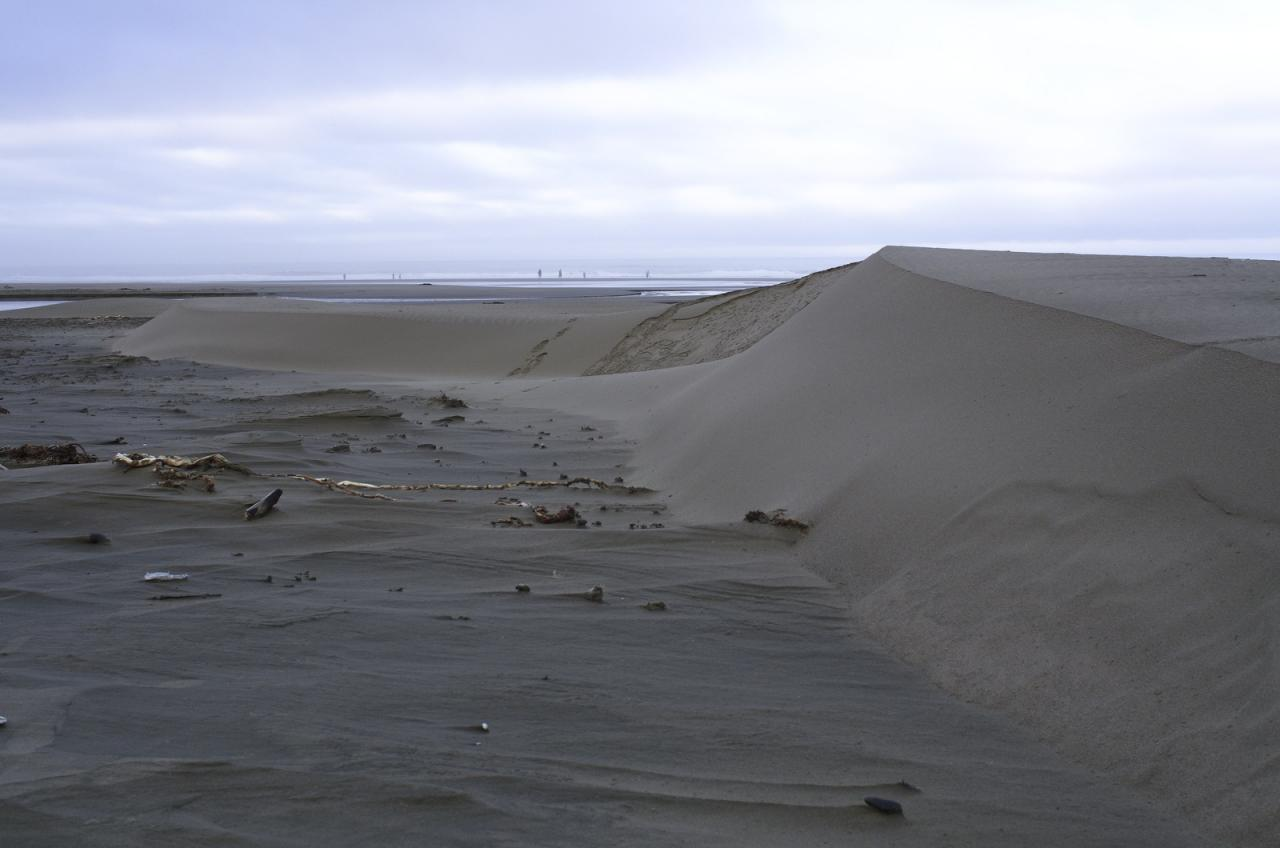 Recent winds have scoured sand from most areas, and neatly dumped it into 3-foot tall drifts in other spots.