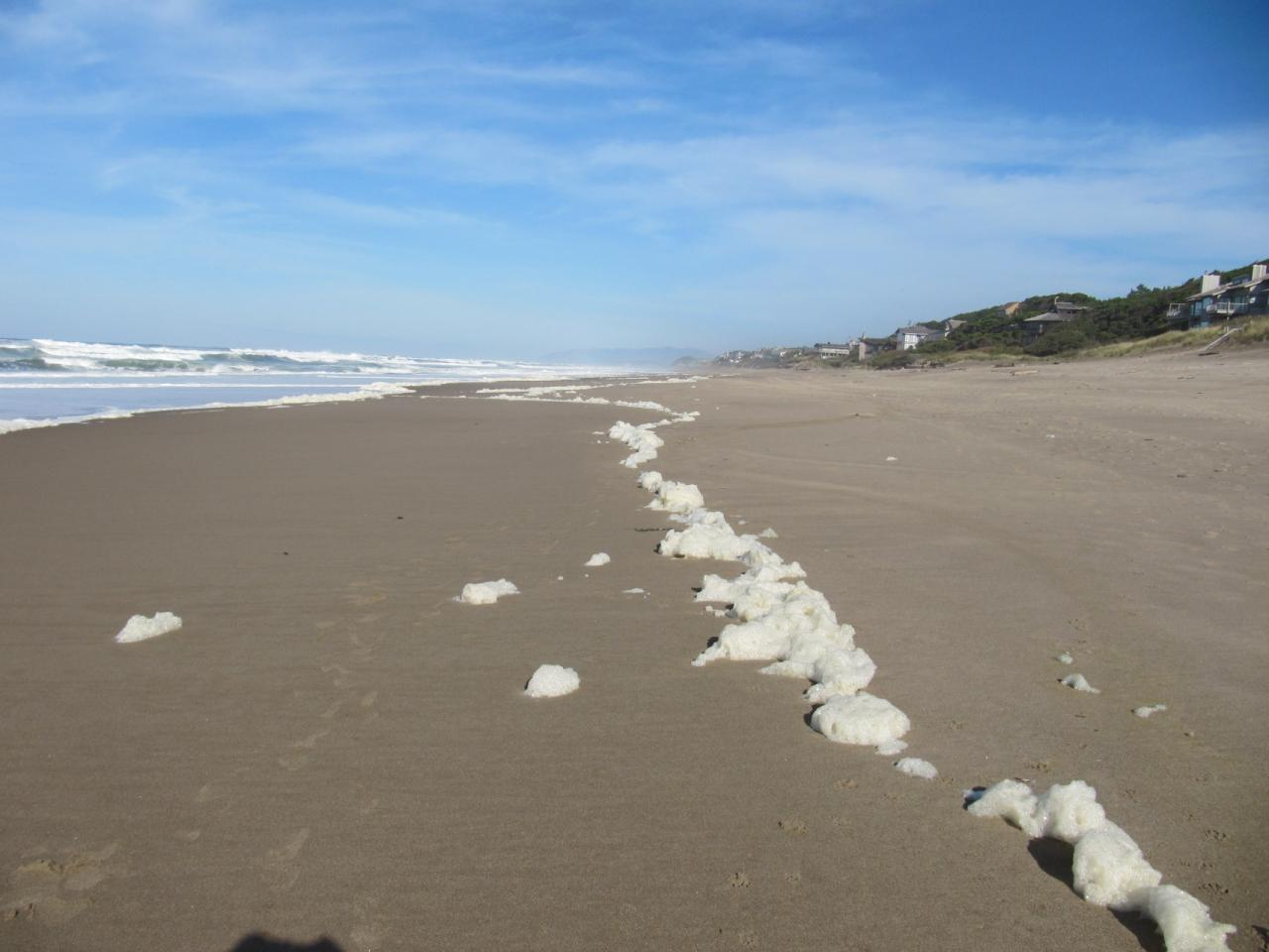 Heavy sea foam, quiet day on the beach.