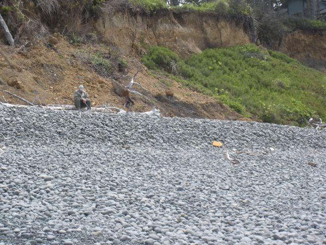 Continued bluff erosion/slide