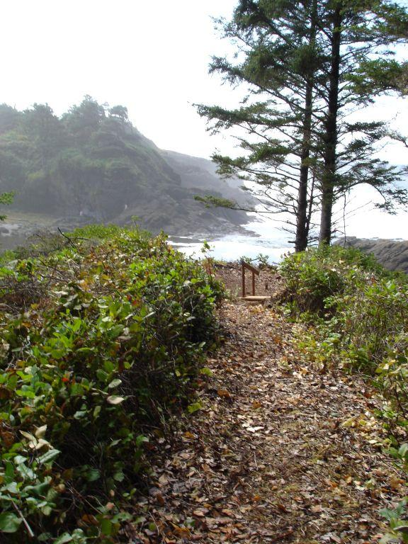 View of path and short stairway to the edge of the bluff.