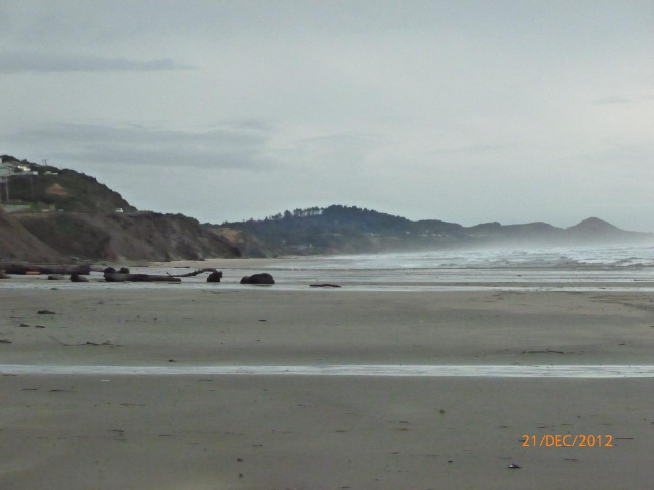 some of the driftlogs on beach, looking towards Beverly Beach.