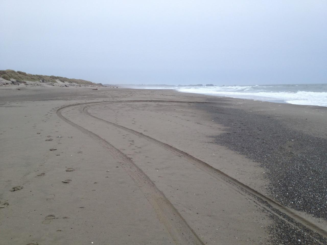 This photo was taken looking south on a part of the closed beach at Bullard's Beach.