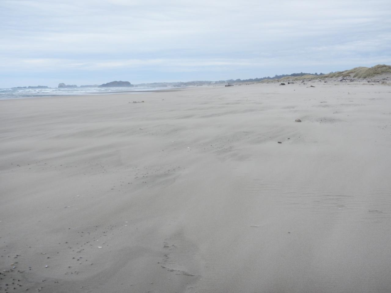 Beach is almost flat today.  Little driftline as the wind has blown it clean!