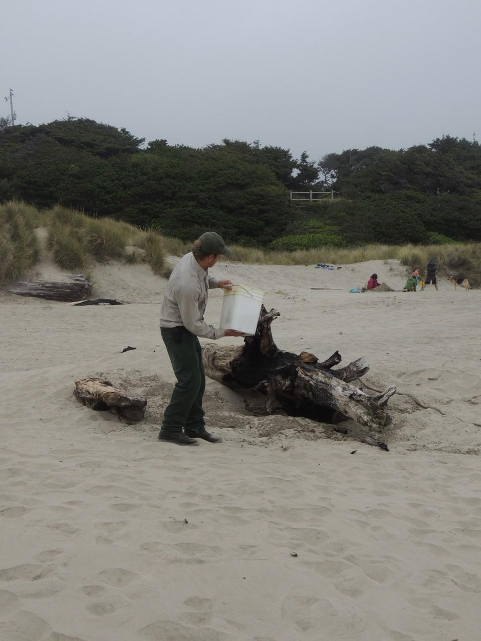 When arriving at Governor Patterson state Park.I walked down to the beach and to the left there was a piece of Drift wood on fire. A park ranger was called to come put it out!
