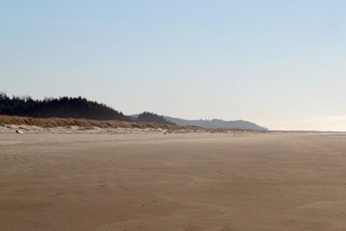 Showing smooth beach and filled in foredunes and beautiful weather.