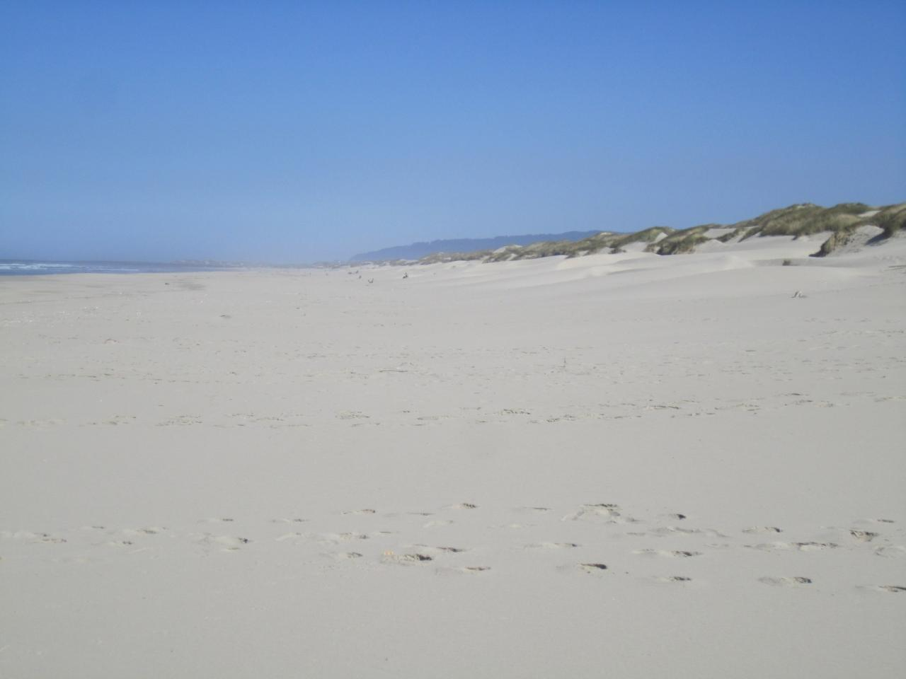 Just beach and footprints