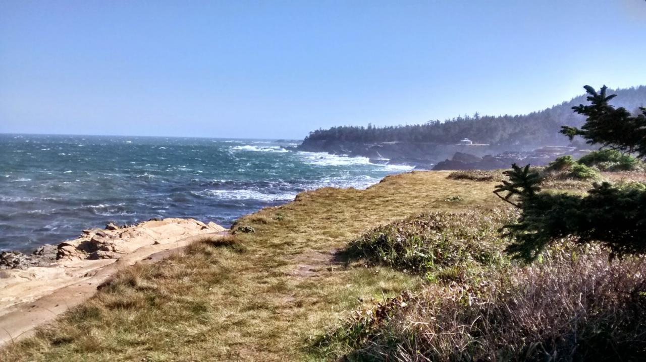 looking north with the Shore Acres viewing station in foreground on a blustery day of wind from the NW.