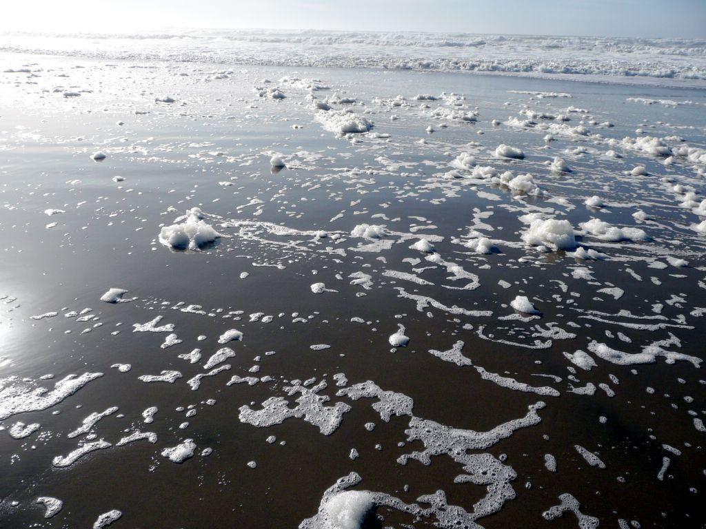 """clean"" foam & beach."