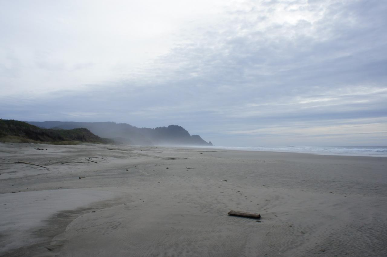 Standing at N. end coordinates of mile 181, with Heceta Head to South (2 miles distant). Used GPS with +/-9' accuracy.