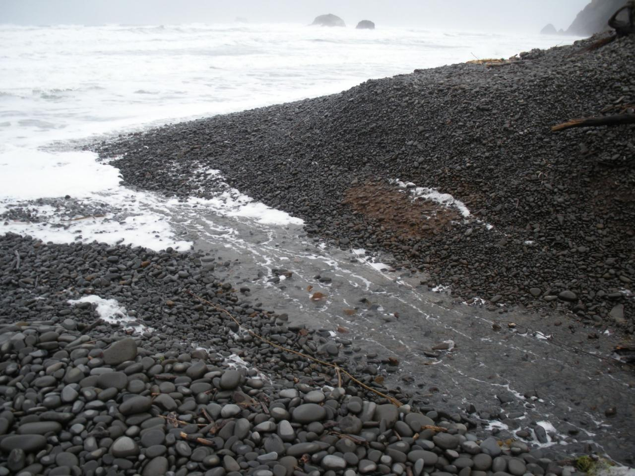 The King Tide eroded the mouth of a small stream coming out onto Cove Beach